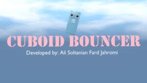 Cuboid Bouncer